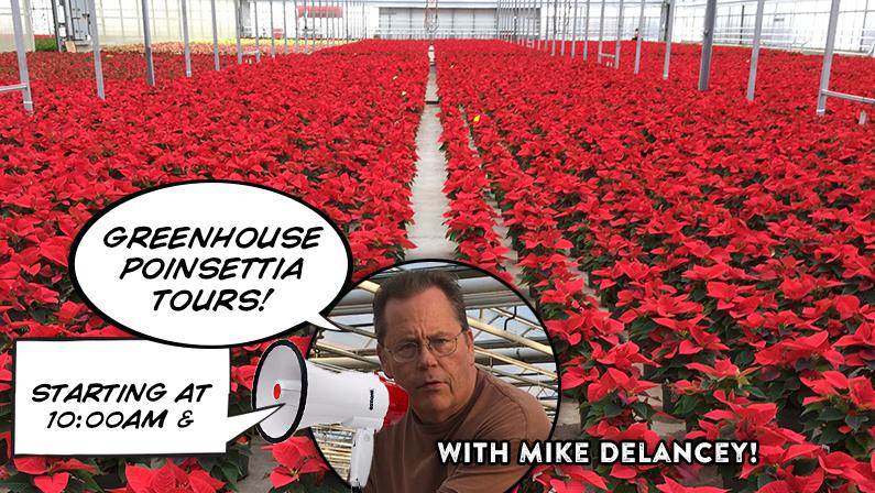 November 10th – Poinsettia Greenhouse Tours